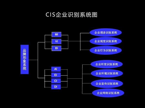 CIS企业识别系统搭建